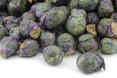 Purple brussel sprouts Stock Photos