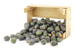 Purple brussel sprouts in a wooden crate Royalty Free Stock Photography