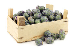 Purple brussel sprouts in a wooden crate Royalty Free Stock Images