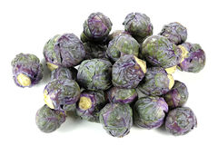 Purple Brussels sprout Royalty Free Stock Images