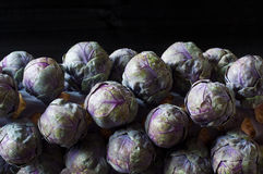 Purple brussels sprouts Stock Image