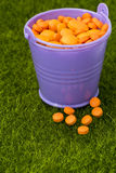 Purple bucket filled to the brim with orange pills standing on grass Royalty Free Stock Image