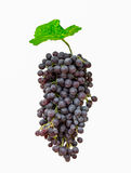 Purple bunch grape with green leaf. Isolated on white background Stock Photos