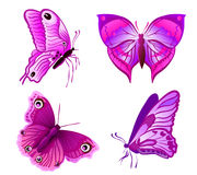 Purple butterflies Royalty Free Stock Photos