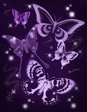 Purple butterfly birthday card stock photography