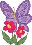 Purple Butterfly Smelling Flowers. Beautiful purple butterfly smelling pink flowers Royalty Free Stock Photography
