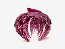 Purple cabbage royalty free stock image