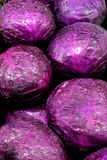 Purple Cabbage Royalty Free Stock Images