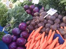 Purple cabbage, black radish, carrot and greens on food bazaar in istanbul turkey. Stock Image