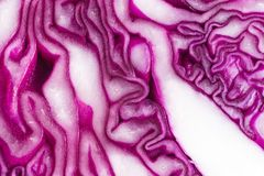 Purple cabbage closeup. Closeup of a cut purple cabbage Royalty Free Stock Photo