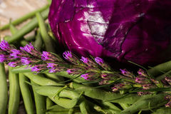 Purple cabbage, green beans and flowers Stock Photography