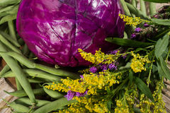 Purple cabbage, green beans and flowers Stock Image