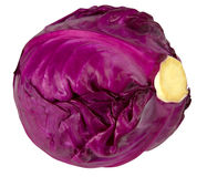 Purple cabbage isolated on white background Royalty Free Stock Photography