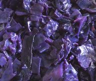 Purple cabbage Royalty Free Stock Photography
