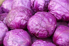 Purple cabbages Stock Photography