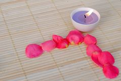 Purple candle with rose petals Royalty Free Stock Images