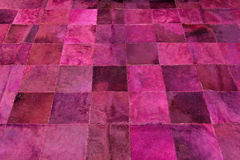 Purple carpet Stock Image