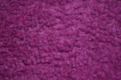 Purple carpeted closeup Stock Image