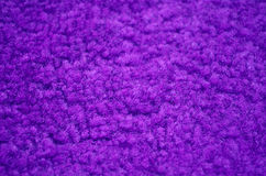 Purple carpeted closeup Stock Images
