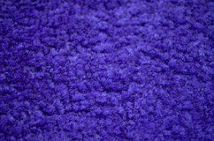 Purple carpeted closeup Stock Photos