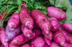 Purple carrots Royalty Free Stock Photo