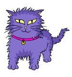 Purple cat Stock Photos