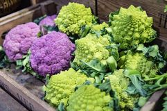 Purple cauliflower and Broccoflower at Market. Purple cauliflower and Broccoflower in wooden crate at Market read for sale Stock Image