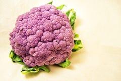 Purple cauliflower with green leaves - Brassica oleracea, Botrytis. Purple cauliflower with green leaves on a white background - Brassica oleracea, Botrytis Stock Photo
