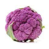 Purple cauliflower. Isolated on white background Stock Photos