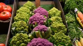 Purple cauliflower, romanesco, rainbow carrots and tomatoes. Fresh vegetables laid out in rows for sale at farmers market stock image