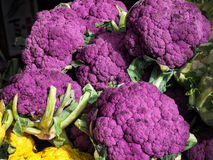 Purple cauliflowers at a farmers market Royalty Free Stock Photo