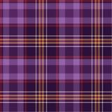 Purple checks. Vector cloth and fashion checks stock illustration
