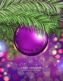 Purple Christmas ball. And fir tree branches on a sparkling  holiday background. Festive Christmas background Stock Images