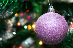 Purple christmas ball on a spruce branch. New year Royalty Free Stock Photography