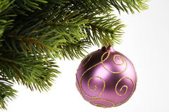 Purple christmas balls with gold lines hangin on c stock images