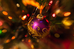 Purple Christmas bauble on Christmas tree Royalty Free Stock Photos