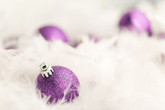 Purple Christmas Baubles. In white feather Stock Photos