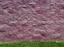 Purple Cinder Block Wall and Grass Royalty Free Stock Photos