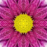 Purple Concentric Flower Center. Mandala Kaleidoscopic design. Purple Concentric Flower Center Macro Close-up. Mandala Kaleidoscopic design stock image