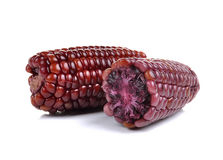 Purple corn isolated on white background Stock Photography
