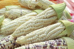 Purple corn in the market Royalty Free Stock Image