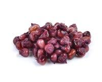 Purple corn seeds  on white background Royalty Free Stock Image