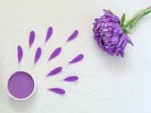 Purple cosmetic cream and purple flower petals. On white background. Creative beauty fashion cosmetics photo. Flat lay Royalty Free Stock Image