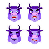 Purple cow Emotions. Set expressions avatar bull. Good and evil. Stock Photos