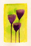 Purple Croci. Watercolour painting of three purple Croci against a yellow and green background Stock Photography
