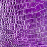 Purple crocodile leather texture Stock Images