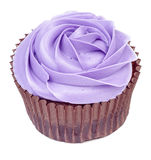 Purple cupcake in rose form isolated Stock Photography