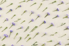 Purple cutter flowers pattern Royalty Free Stock Photos