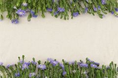 Purple cutter flowers on white muslin fabric Royalty Free Stock Photo