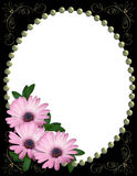 Purple Daisy border frame Stock Photos